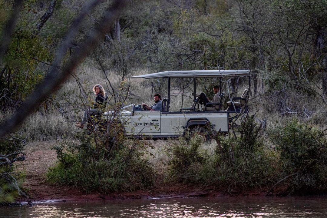 virtual-safaris-painted-dog-tv-05